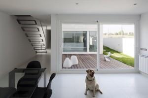 dogs4 yarazitronenblatt