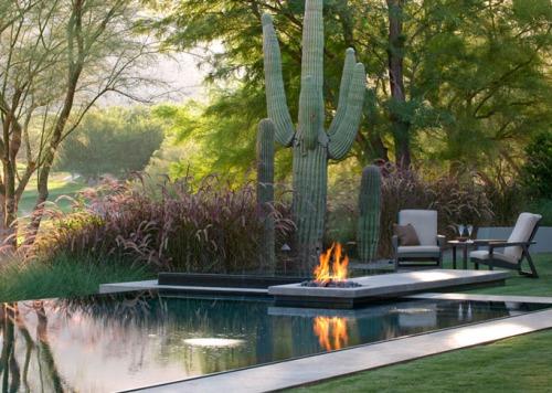 pool desert