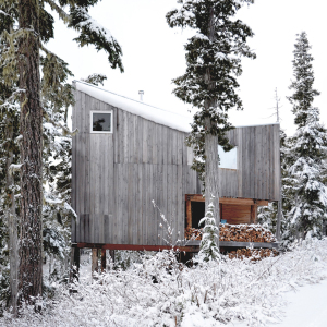 Alpine Cabin/Scott & Scott Architects
